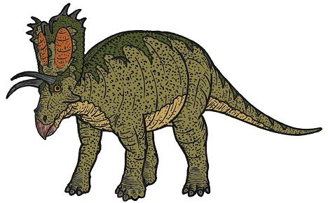 Pentaceratops picture 3