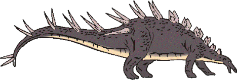 Kentrosaurus picture 3