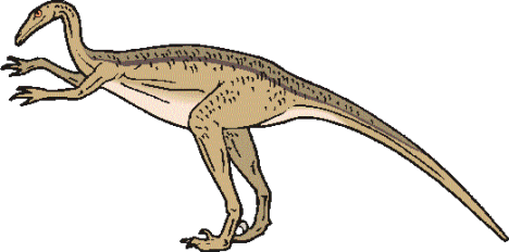 dinosaur picture troodon