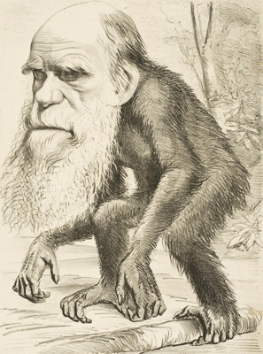 Caricature of Charles Darwin as an ape